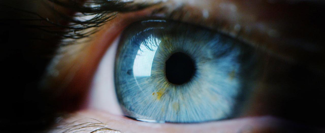 Прибор все увидит «по глазам»