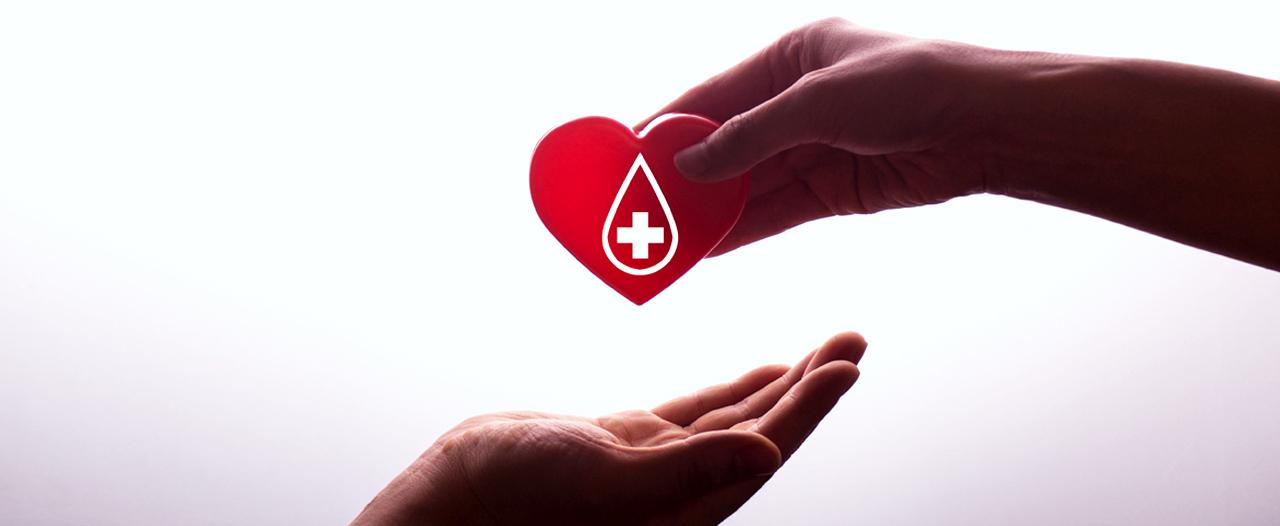 Существуют ли универсальные доноры крови?