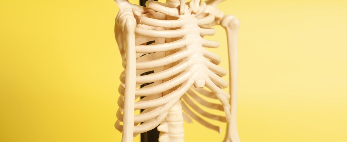 Вытащить из плена «неправильной» грудной клетки
