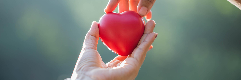 Томские ученые печатают детские сердца на 3D-принтере