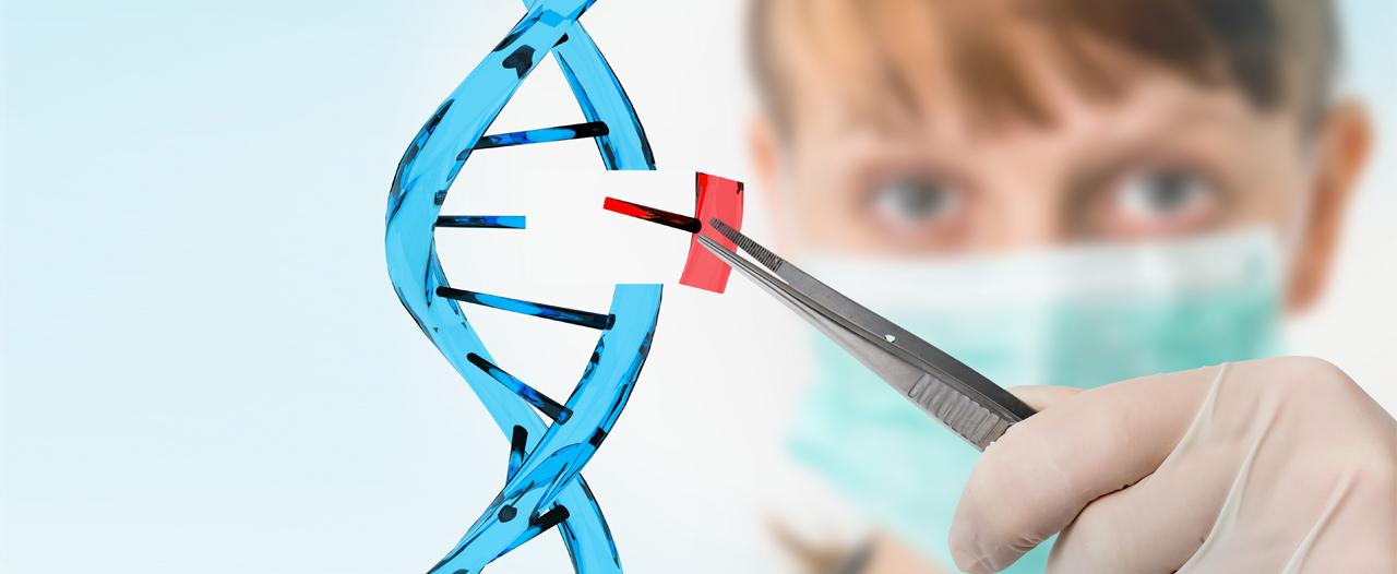 Сломанную ДНК можно починить