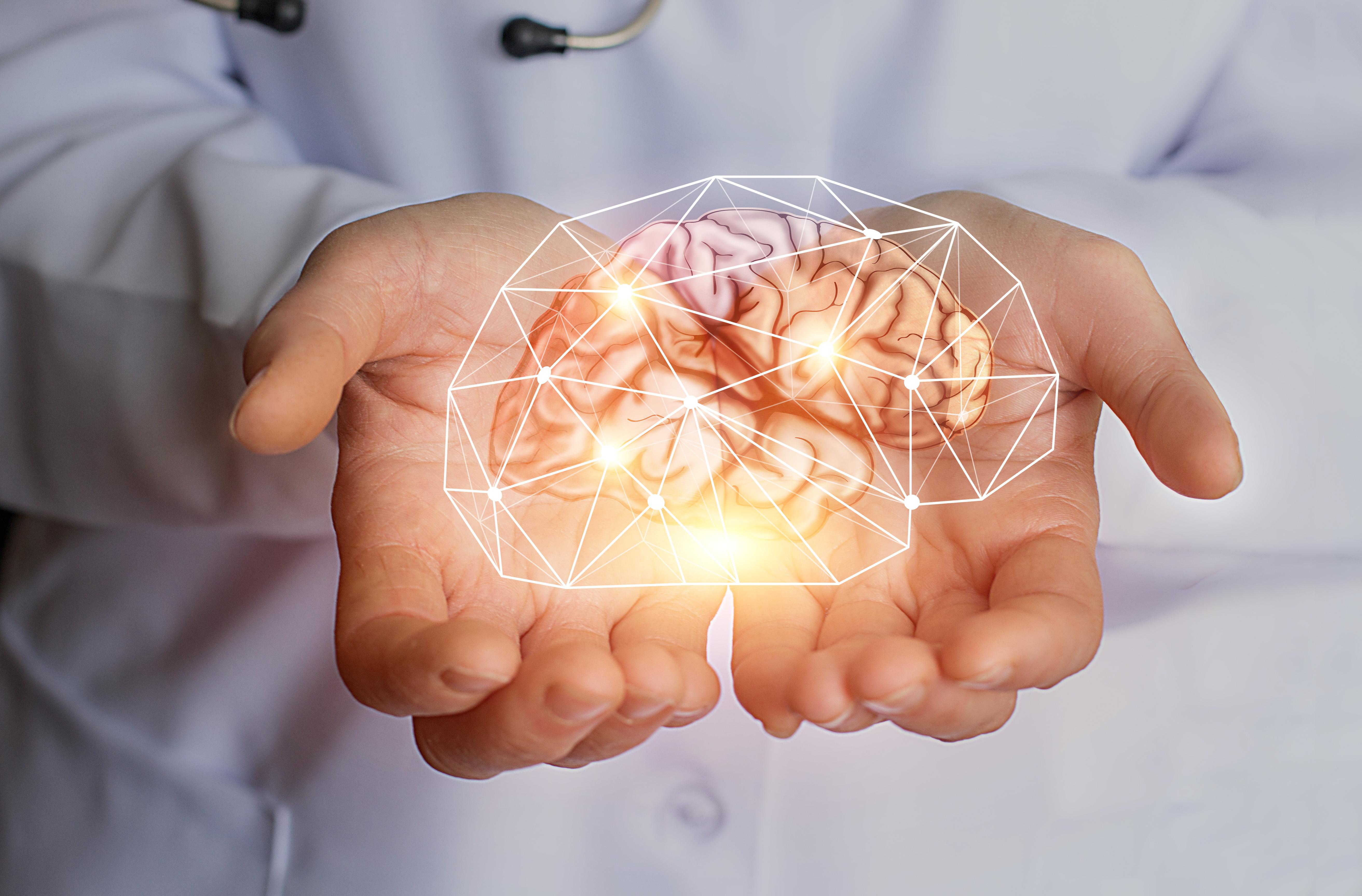 Нейробиологи «заглянули» в поврежденный инсультом мозг