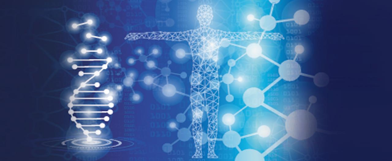 «Наша страна скоро вступит в эпоху клеточных технологий»