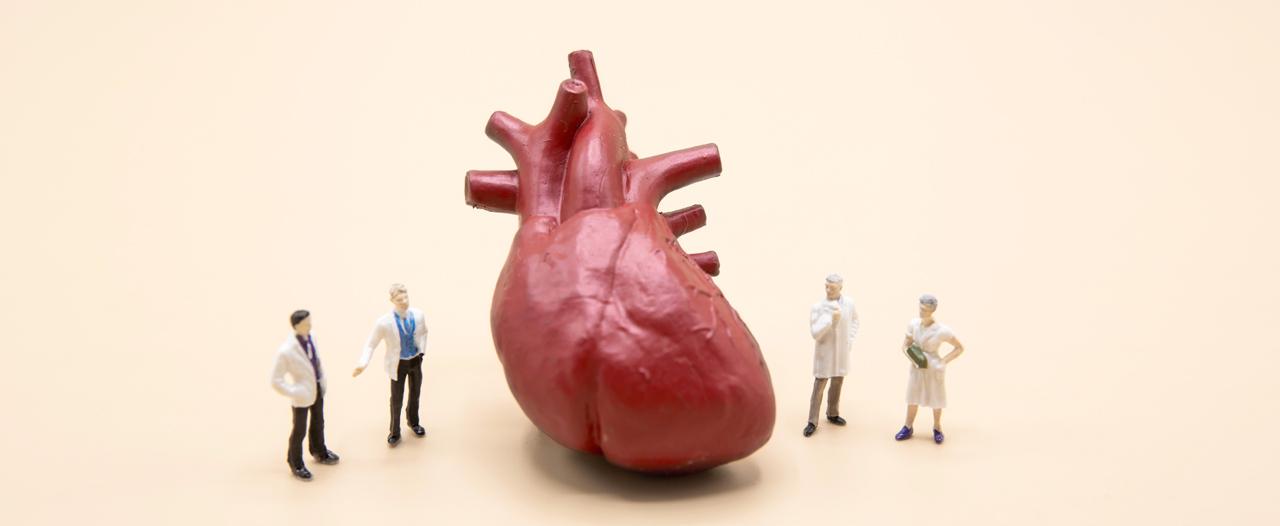 Российская трансплантология вышла на новый уровень