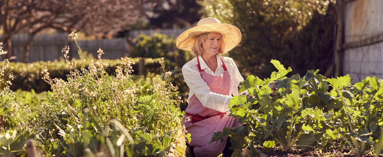 «И уже через неделю можно в сад-огород»