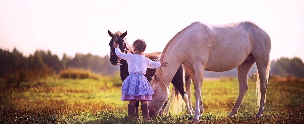 Лошади помогают детям «выйти» из своего диагноза