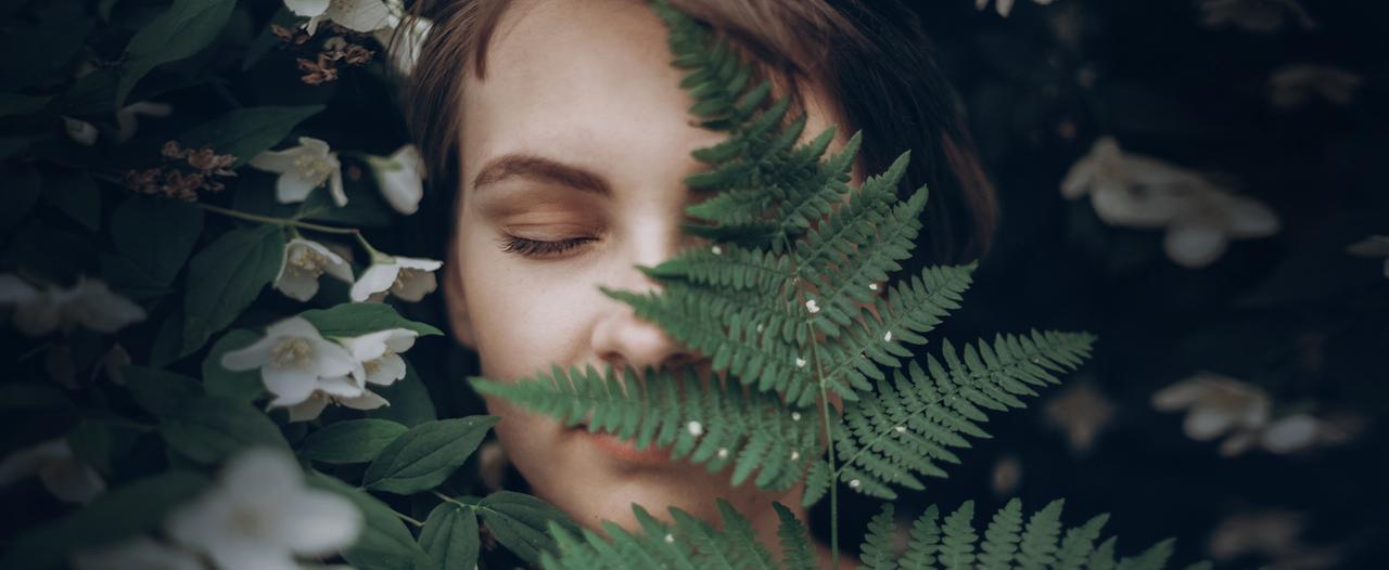 Растения не позволят стрессу разрушить организм