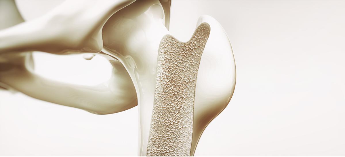 Ростовские инженеры разработали технологию для регенерации поврежденных костных тканей