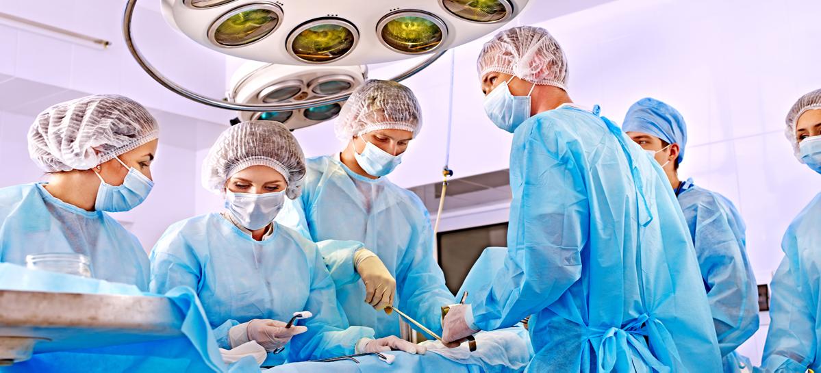 100 трансплантаций почек и 30 трансплантаций печени в год