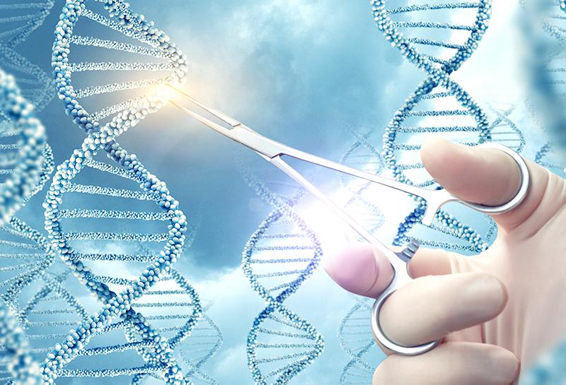 Российские ученые взяли в руки «генетические ножницы»