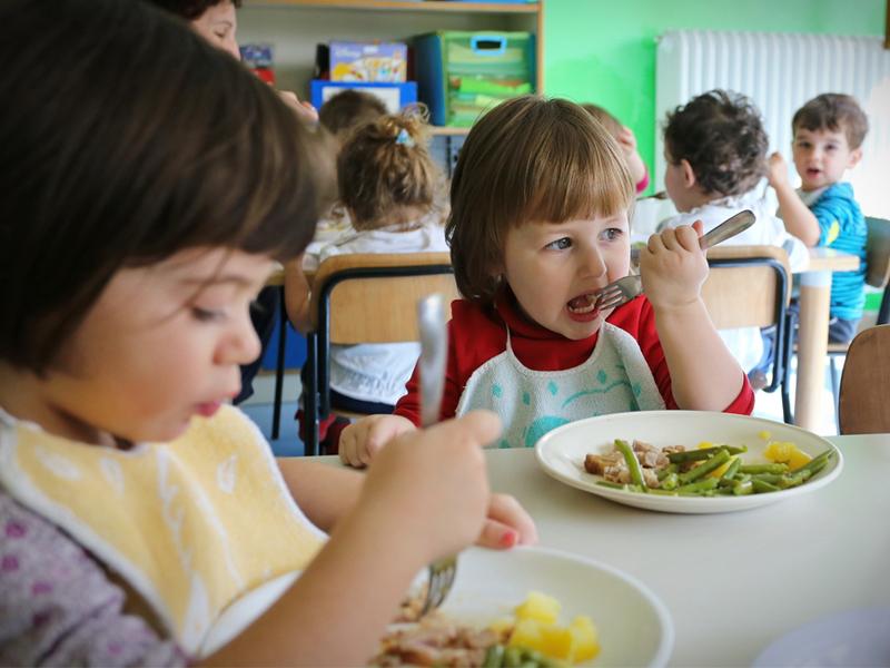 В Госдуме предложили создать концепцию здорового питания для детей