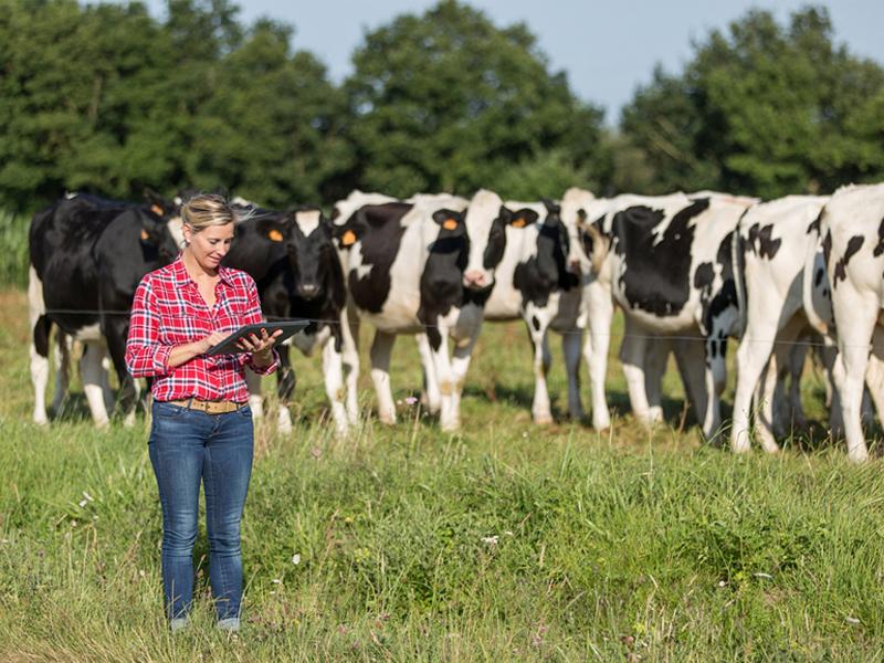 Антибиотики и пестициды будут занесены в федеральные реестры