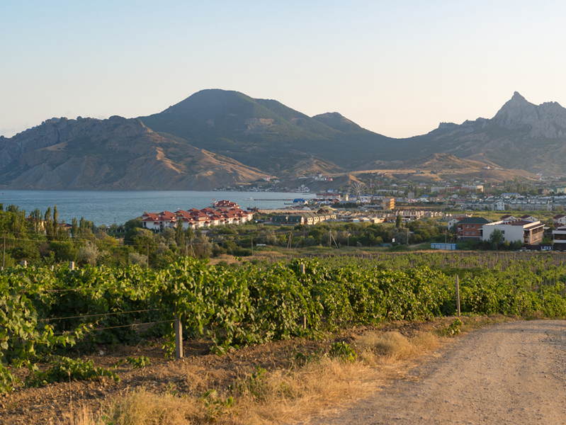 За девять месяцев в Крыму потребление алкоголя снизилось в два раза