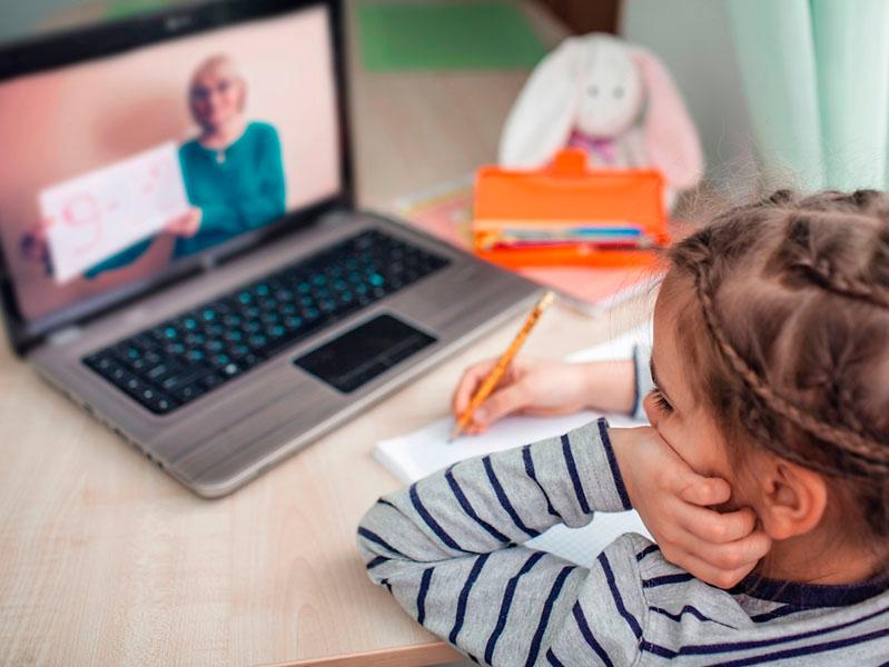 Учеба онлайн. Новая жизнь студентов, школьников и их родителей