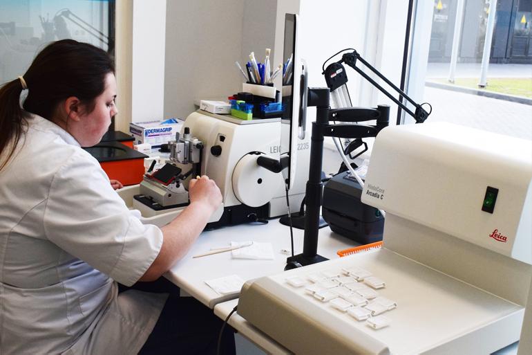 Лаборант работает с биоматериалом